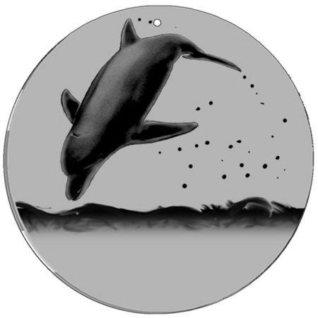 Magic Disc - CineSpinner Dolphin 11'